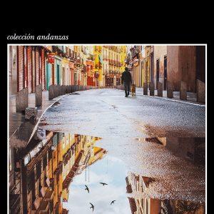 Los vencejos, novela de Fernando Aramburu